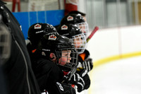 Squirt B2 Armstrong Cooper vs Osseo Maple Grove